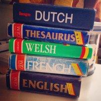 słowniki językowe